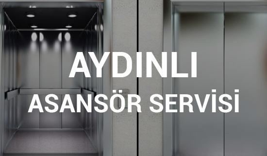 Aydınlı Asansör Servisi