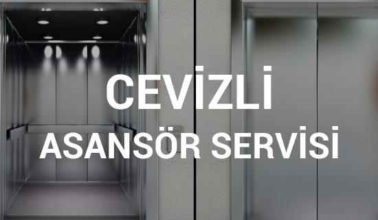 Cevizli Asansör Servisi