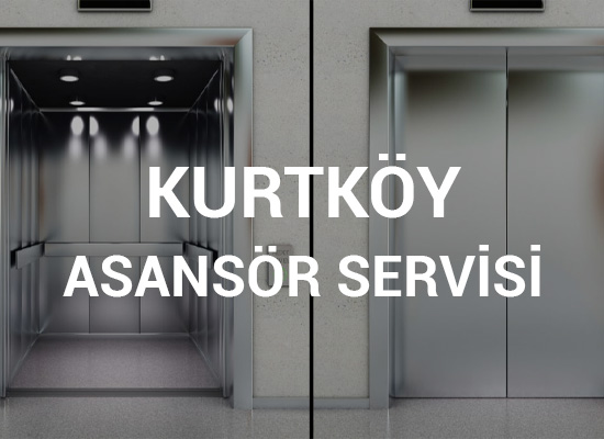 Kurtköy Asansör Servisi